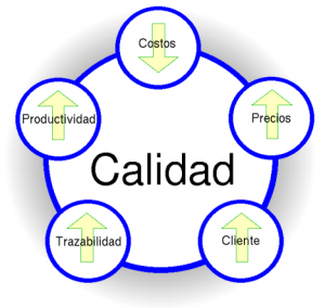 modeloCalidad_1